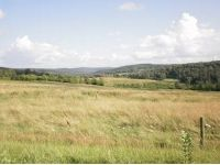 Home for sale: 6342 Peterson & Meshoppen Creek Rds, Montrose, PA 18801