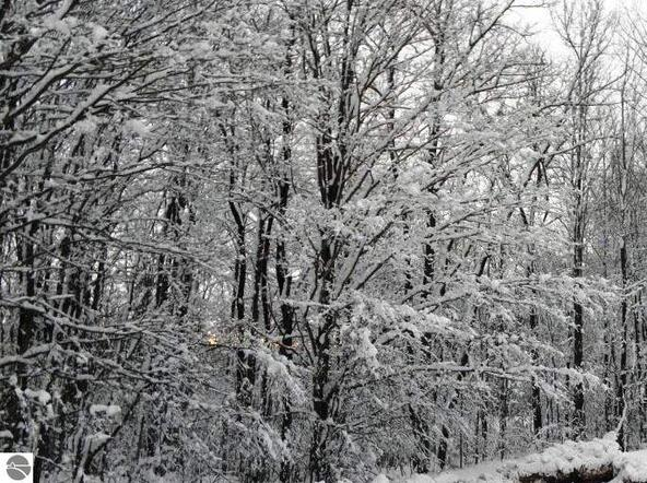0018 Heather Ridge Trail, Beulah, MI 49617 Photo 6