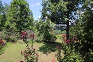 715 Moonlight Rd., Mammoth Spring, AR 72554 Photo 36
