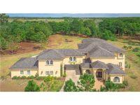 Home for sale: 26020 Splendid Meadow Ct., Astatula, FL 34705