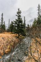Home for sale: 16821 Byron Dr., Anchorage, AK 99516
