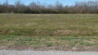 Home for sale: Lot 68 Golden Way, Coldwater, MS 38618