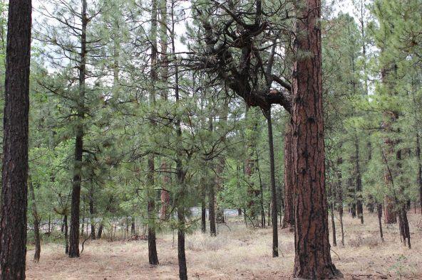 4045 Buck Springs Rd., Pinetop, AZ 85935 Photo 13