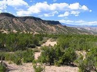 Home for sale: Lot B Near Old Buckman Rd. & Rio Grande, Santa Fe, NM 87501
