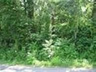 Home for sale: Lot 32 Peninsula Dr., Spring City, TN 37381