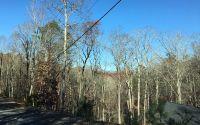Home for sale: L2097 Pelican, Ellijay, GA 30540