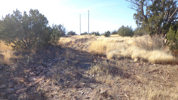 211 Juniperwood Rnch Un 3 Lot 211, Ash Fork, AZ 86320 Photo 27