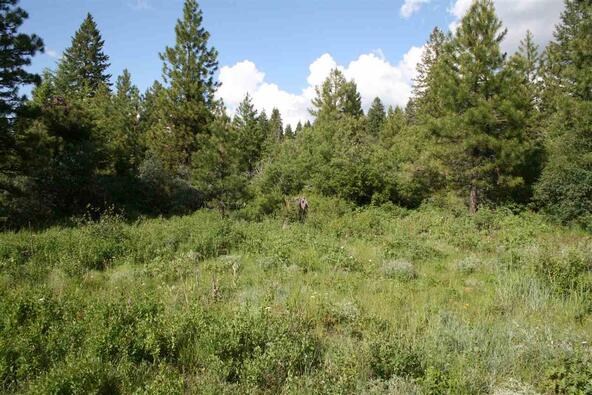 Lot 19 Forest Highlands, Boise, ID 83716 Photo 14