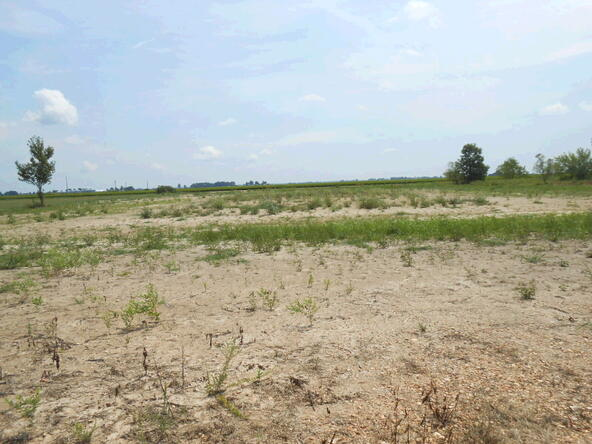 3.33 Acres Cr 945, Jonesboro, AR 72401 Photo 2