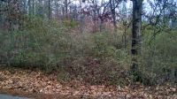 Home for sale: Tract 1 New Summit Hill Rd., Ringgold, GA 30736