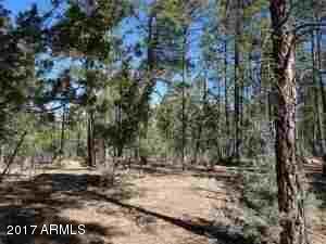 1090 W. Sadler Ln., Lakeside, AZ 85929 Photo 29