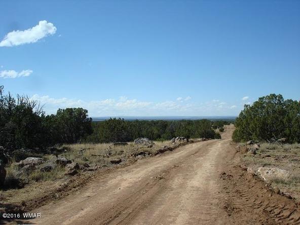 9073 Cibola Dr., White Mountain Lake, AZ 85912 Photo 4