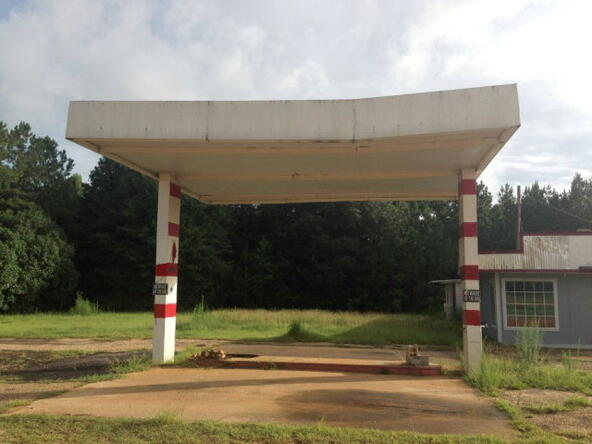 12204 South Us 231, Midland City, AL 36350 Photo 10
