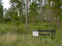 Home for sale: 14229 Glen Farms Dr., Glen Saint Mary, FL 32040