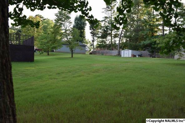 1206 Wildwood Avenue, Scottsboro, AL 35769 Photo 23