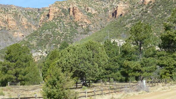 220 W. Zane Grey Cir., Christopher Creek, AZ 85541 Photo 50