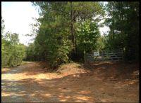 Home for sale: County Rd. 149, New Brockton, AL 36351
