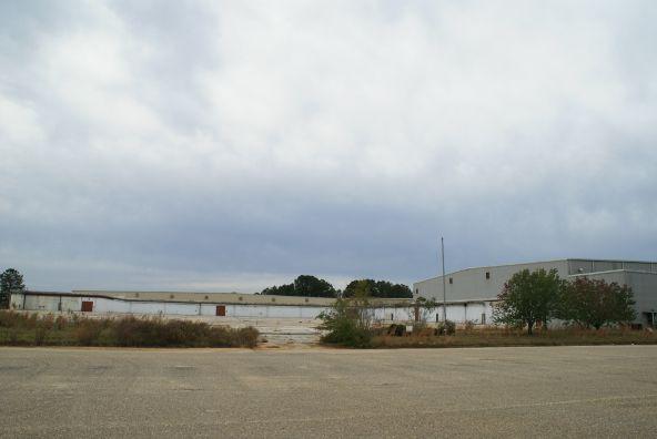2251 Hwy. 84, Elba, AL 36323 Photo 2