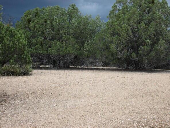 11100 W. Rawhide Trail, Skull Valley, AZ 86338 Photo 33