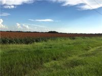 Home for sale: 0 Hwy. 90a, Beasley, TX 77417
