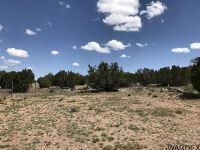 Home for sale: Lot 934 Sierra Verde Ranch, Seligman, AZ 86337