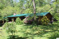 Home for sale: 114 Wildwood Way, Gatlinburg, TN 37738