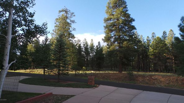 301 N. Sky View St., Flagstaff, AZ 86004 Photo 38