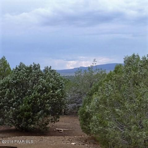 2221 N. Bolinda Ln., Ash Fork, AZ 86320 Photo 19