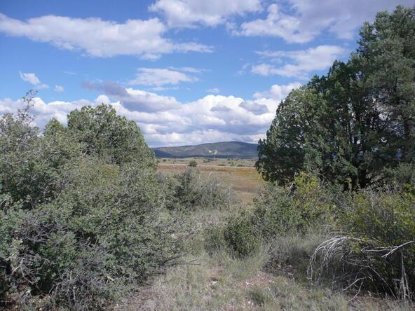290 N. Navajo Trail, Young, AZ 85554 Photo 6