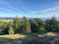 Home for sale: Botsford Ln., Friday Harbor, WA 98250