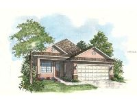 Home for sale: 8261 Bridgeport Bay Cir., Mount Dora, FL 32757