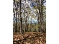 Home for sale: 0 Forked Leaf Dr., Cleveland, GA 30528