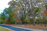 Home for sale: Tbd Lot#2 County Rd. 4114, Pittsburg, TX 75686