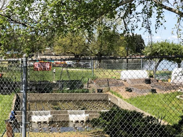 9631 Whitecap Dr. N.W., Olympia, WA 98502 Photo 24