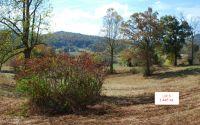 Home for sale: Lt6 Jack Groves Ln., Hayesville, NC 28904
