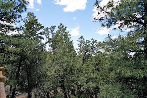 560 W. Aspen Trail, Show Low, AZ 85901 Photo 39
