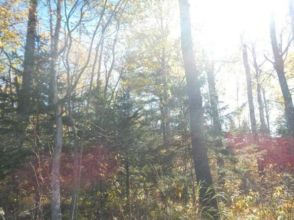 Off Township Corners Rd., Kennan, WI 54537 Photo 4