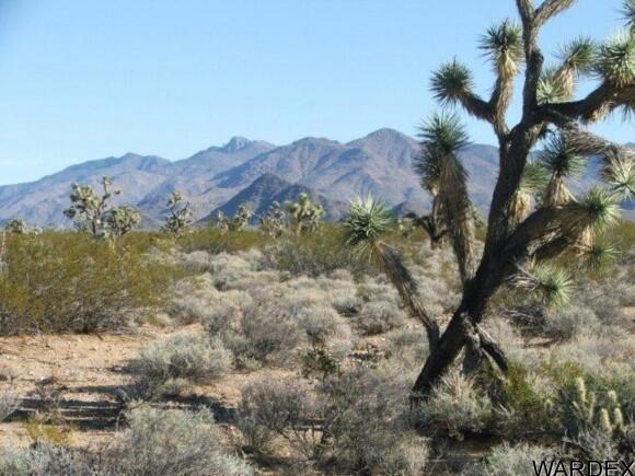 3529-C Arroyo Rd., Yucca, AZ 86438 Photo 10