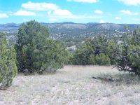 Home for sale: 49 Abbe Springs Ranch, Magdalena, NM 87825