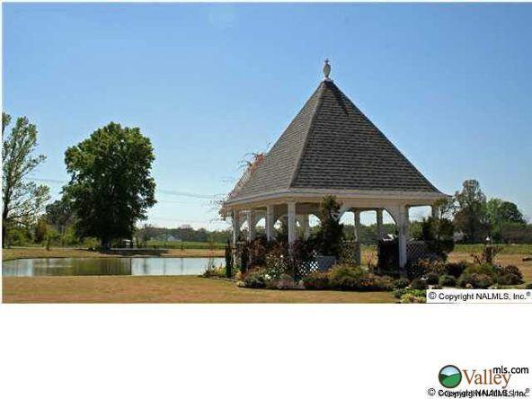 2801 Turtle Pond Ln., Hartselle, AL 35640 Photo 1
