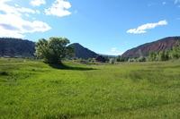 Home for sale: 0248 River Bank Ln., Glenwood Springs, CO 81601