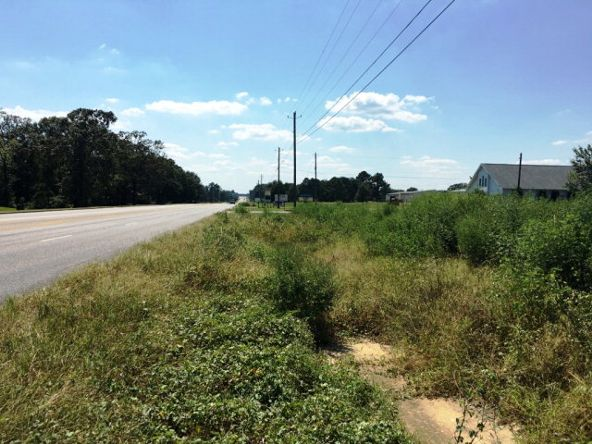 6.2 Acres Hartford Hwy., Dothan, AL 36305 Photo 11