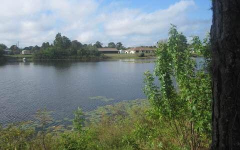 704 Lake Betty Dr., Lake Placid, FL 33852 Photo 8