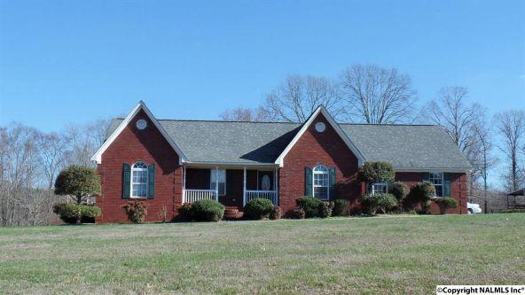 278 County Rd. 557, Grove Oak, AL 35975 Photo 13