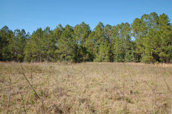 Greengrove Bv, Lot 12, Clermont, FL 34711 Photo 2