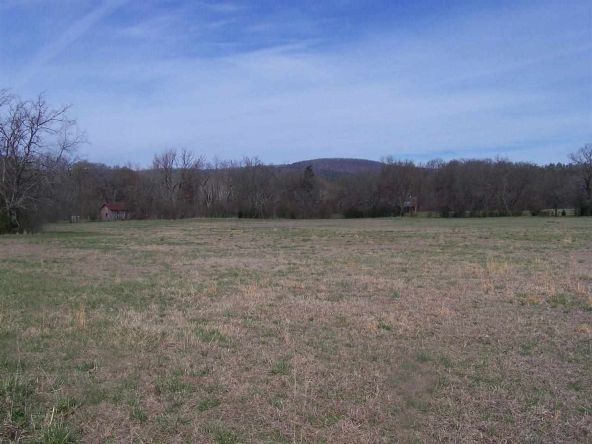 24 Acres Glazypeau Rd., Murfreesboro, AR 71958 Photo 4