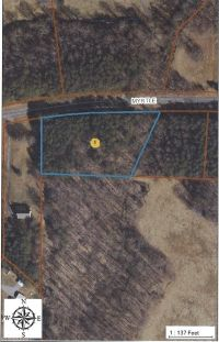 Home for sale: 01 Myrtle Ln., Yadkinville, NC 27055