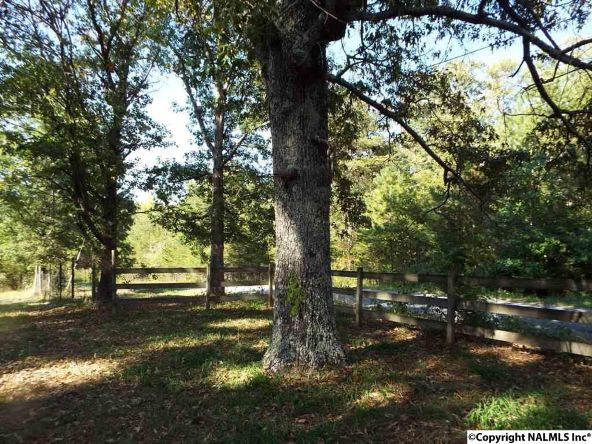 1654 County Rd. 641, Mentone, AL 35984 Photo 23