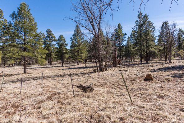 5975 E. Abbey Rd., Flagstaff, AZ 86004 Photo 56