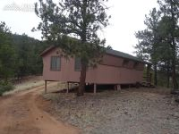 Home for sale: 259 S. Vermillion Rd., Lake George, CO 80827